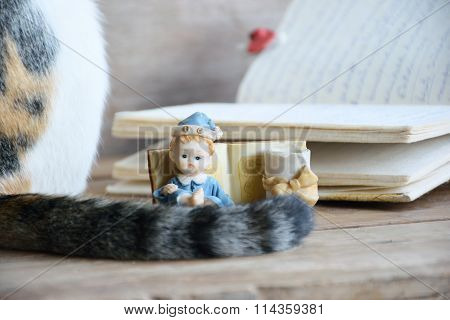 Old Raisin doll with diary and cat tail