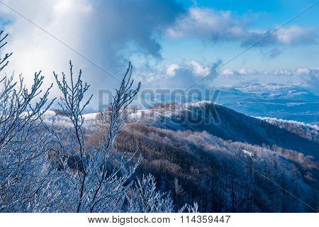 High Mountain Peeks