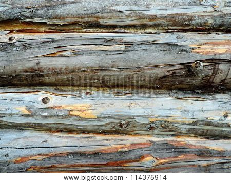 Dark gray uneven wood trunks