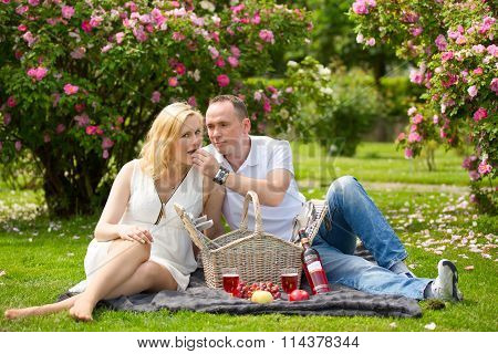 Cute Couple Vacationer On Picnic