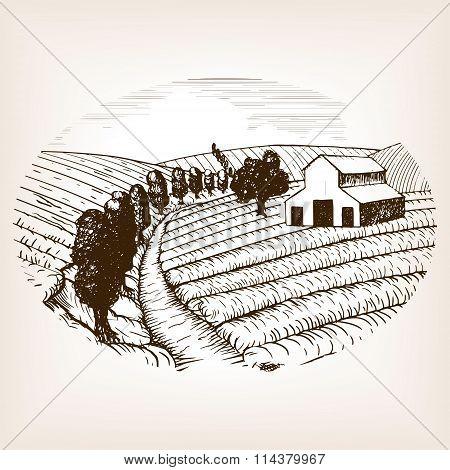 Farm landscape sketch style vector