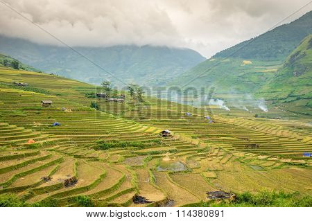 Rice fields at Lim Mong, Tu Le, Mu Cang Chai