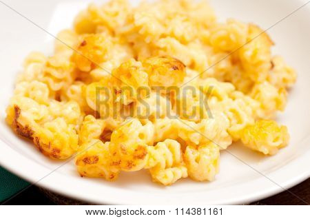 Creamy Cheese And Radiatore Pasta