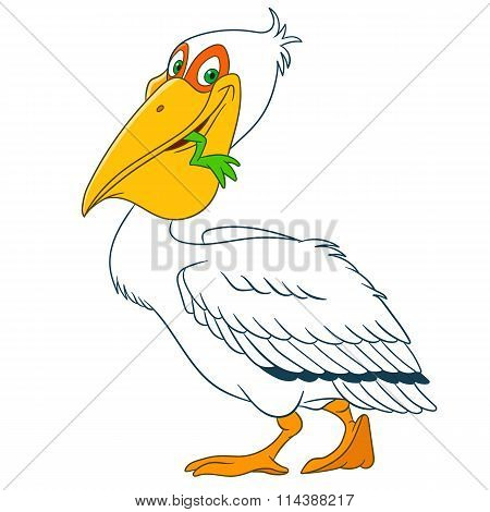 Cute Cartoon Pelican