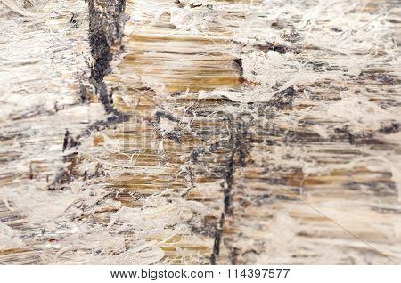 Asbestos, Serpentine Fibers