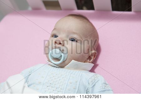 Cute Four Month Baby Boy Lying In Cot With Pacifier