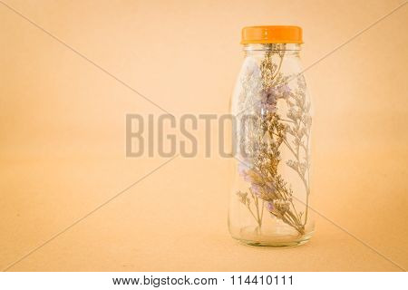 Beautiful Violet Dried Flower In The Bottle