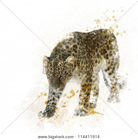 Digital Painting of Walking Leopard