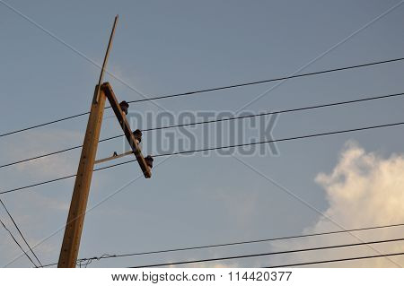 electric pole and wire