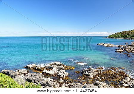 ocean view from rocky beach in Bluff, New Zealand