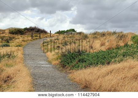 A path in  Granite Island off the coast of Victor Harbour South Australia