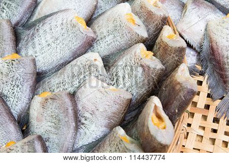 Snakeskin Gourami Fish,Pla Salit fish (Trichogaster pectoralis) dry overlay local cuisine thailand.