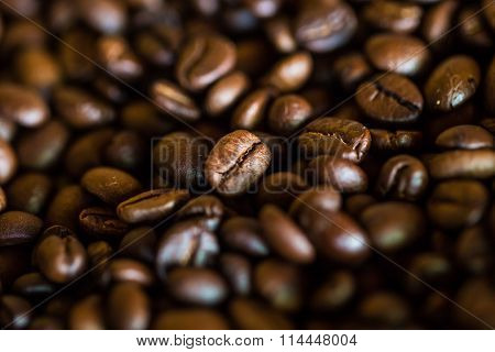 Selective Focus Of Brown Roasted Coffee Bean