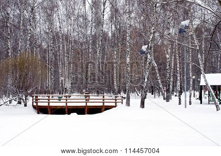 Wooden Railings From Frozen River With Birches