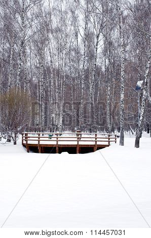 View To Wooden Railings From Frozen River Vertical