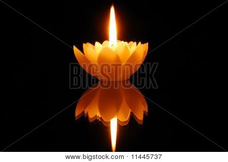Lotus candle and reflection