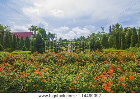 Tropical Botanical Garden