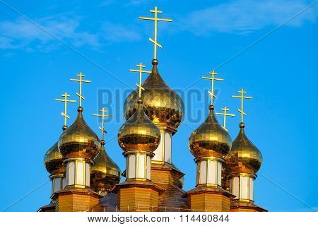 Golden domes