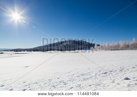 Winter Landscape With Sunshine