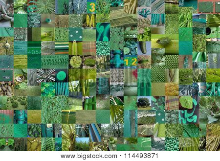 GREEN patchwork photo montage background