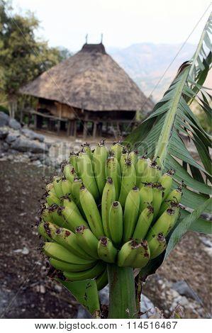 Asia East Timor Timor Leste Moubisse Landscape