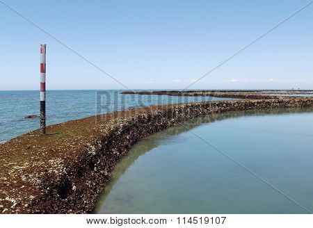 Seascape with Winding Coral Walkway