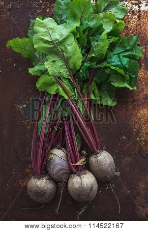 Bunch of fresh garden beetroot over grunge rusty metal backdrop, top view.