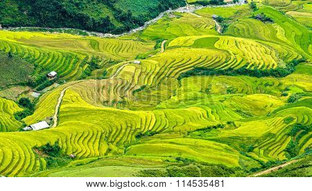 Terraced fields stretching down the valley