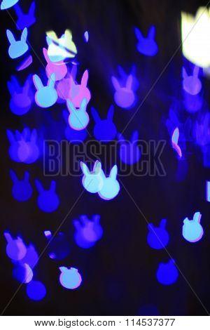 Rabit bokeh blur background