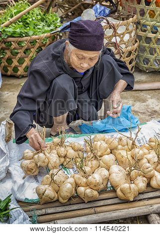 Ethnic old woman in markets selling cassava countryside