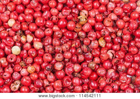Many Red Pepper Peppercorns
