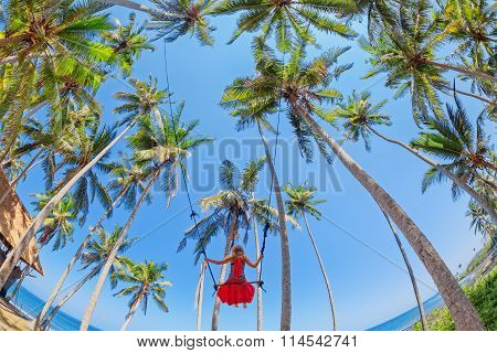 Beautiful Girl On Rope Swing Among Coconut Palms On Beach