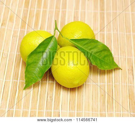 whole lemon fruits
