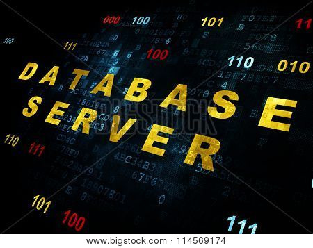 Software concept: Database Server on Digital background