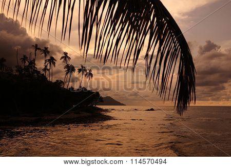 South America Venezuela Choroni Beach