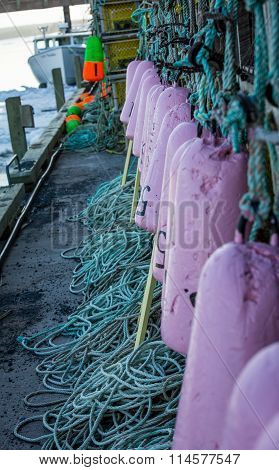 purple lobster buoys