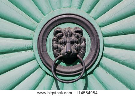 Head Of A Lion Cub Holding A Door Handle In His Mouth, Front Door