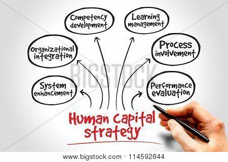 Human Capital Strategy