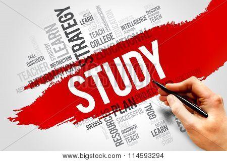 STUDY word cloud education concept, presentation background