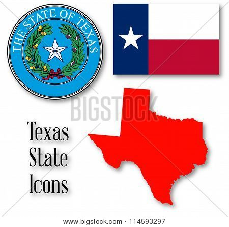 Texas State Icons