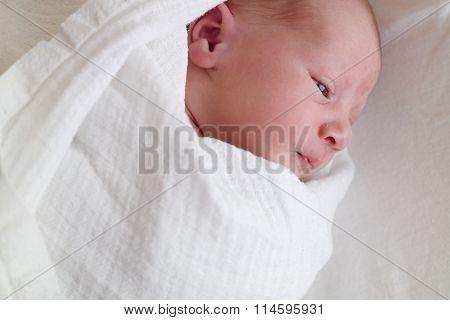 Newborn Baby Boy In White Cloth Diaper