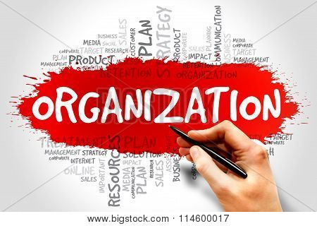 ORGANIZATION word cloud business concept, presentation background