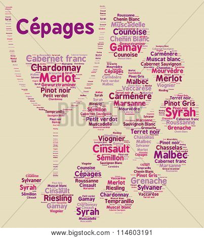 Varietal of grapes in France word cloud