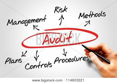 Audit Diagram