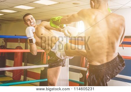 Fighters Fighting On The Ring
