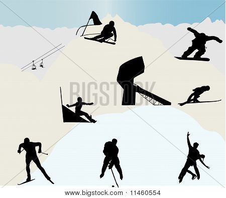 Winter sports - vector