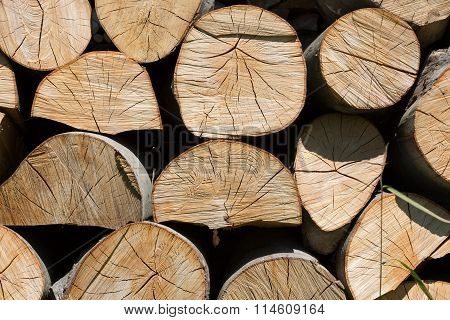 dry chopped firewood logs in a pile