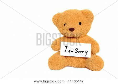 Teddy Bear With
