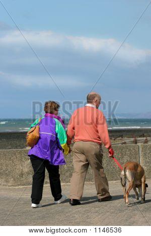 Elderly Walkers