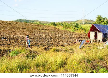 BAGO, MYANMAR - November 18, 2015: People working on the land in the countryside from Myanmar. Agriculture is the main industry in the country, employing 65% of the labour force.